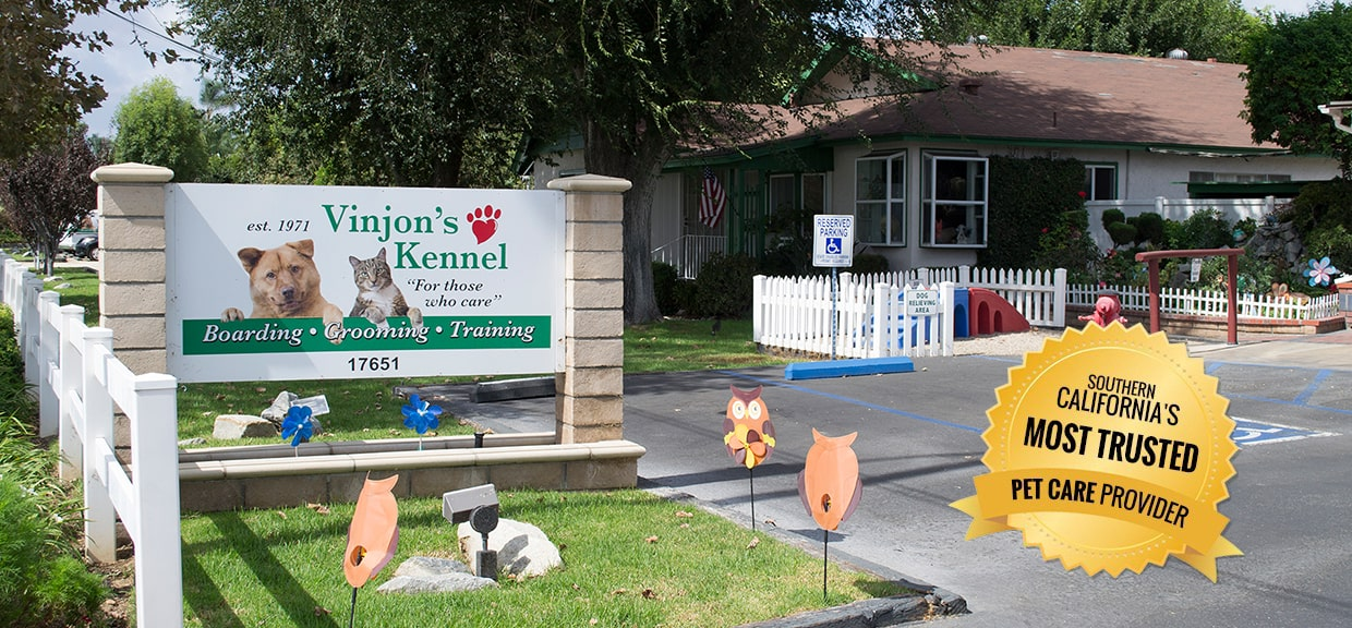 Pet Boarding, Grooming and Training  services